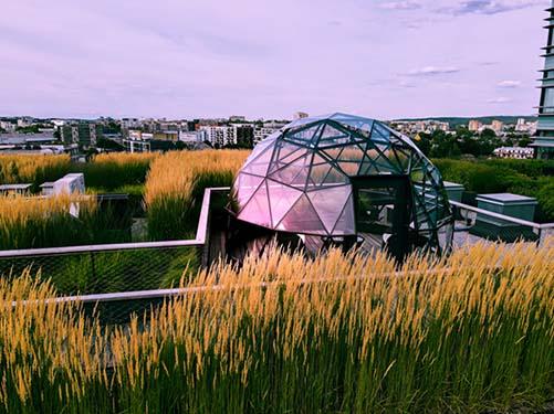 aliuminum dome